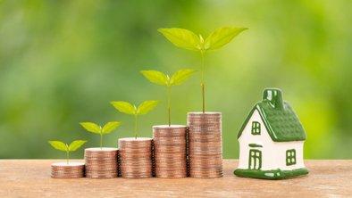 Real Estate or Stocks