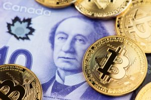 Bitcoin Pandemic Inflation Fears